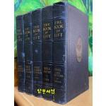 1930년 the book of life bible 2.3.4.5.7 성경책 다섯권 일괄판매